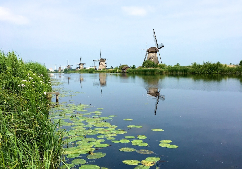 Green Heart: Snapshots from Holland