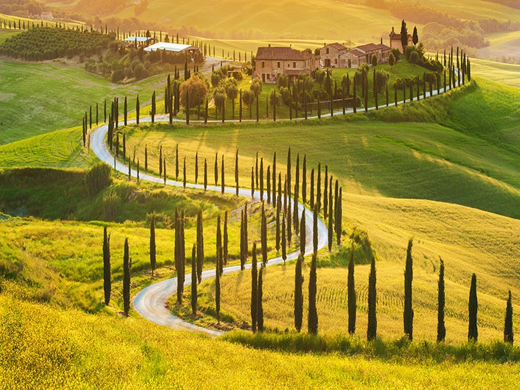 A cycling classic! Two wheels in Tuscany