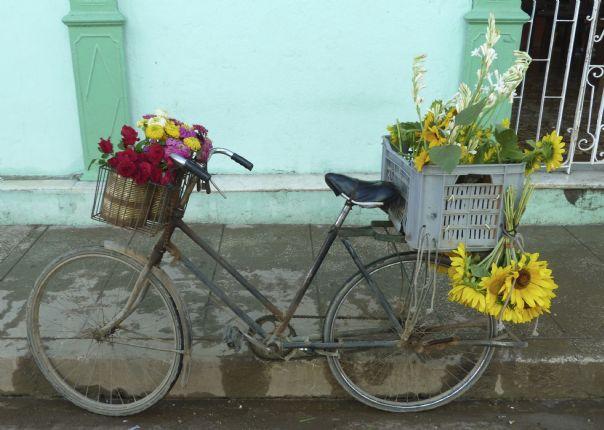 _Customer.49663.21080.jpg - Cuba - Cuban Revolutions - Cycling Adventures