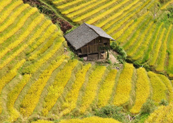DSC_1001.jpg - China - Guilin and Guangxi - Cycling Adventures