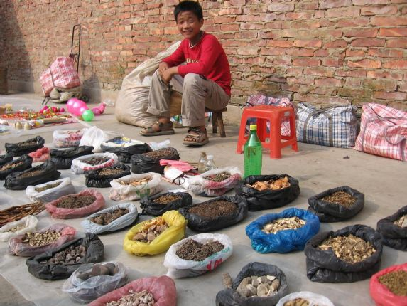 Chinese herbalist.JPG - China - Guilin and Guangxi - Cycling Adventures