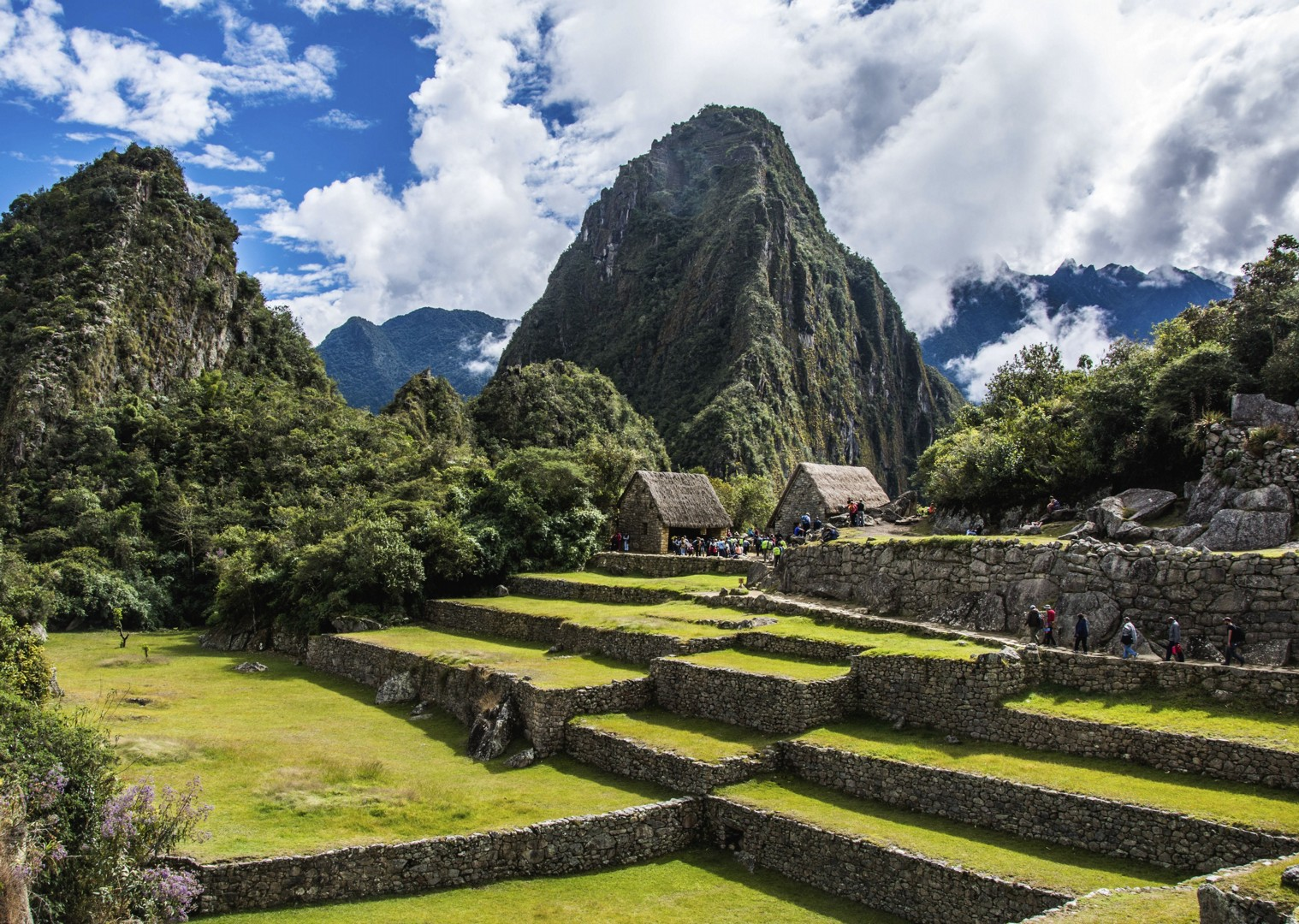Peru Jul 2014-6558.jpg - Peru - Andes, Amazon and Machu Picchu - Cycling Adventures