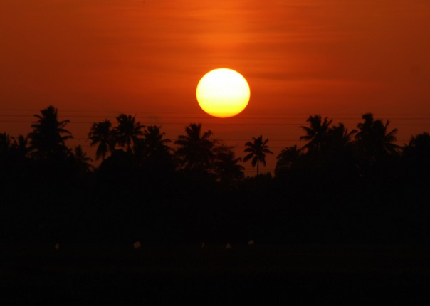 P1020608.JPG - India - Classic Kerala - Cycling Adventures