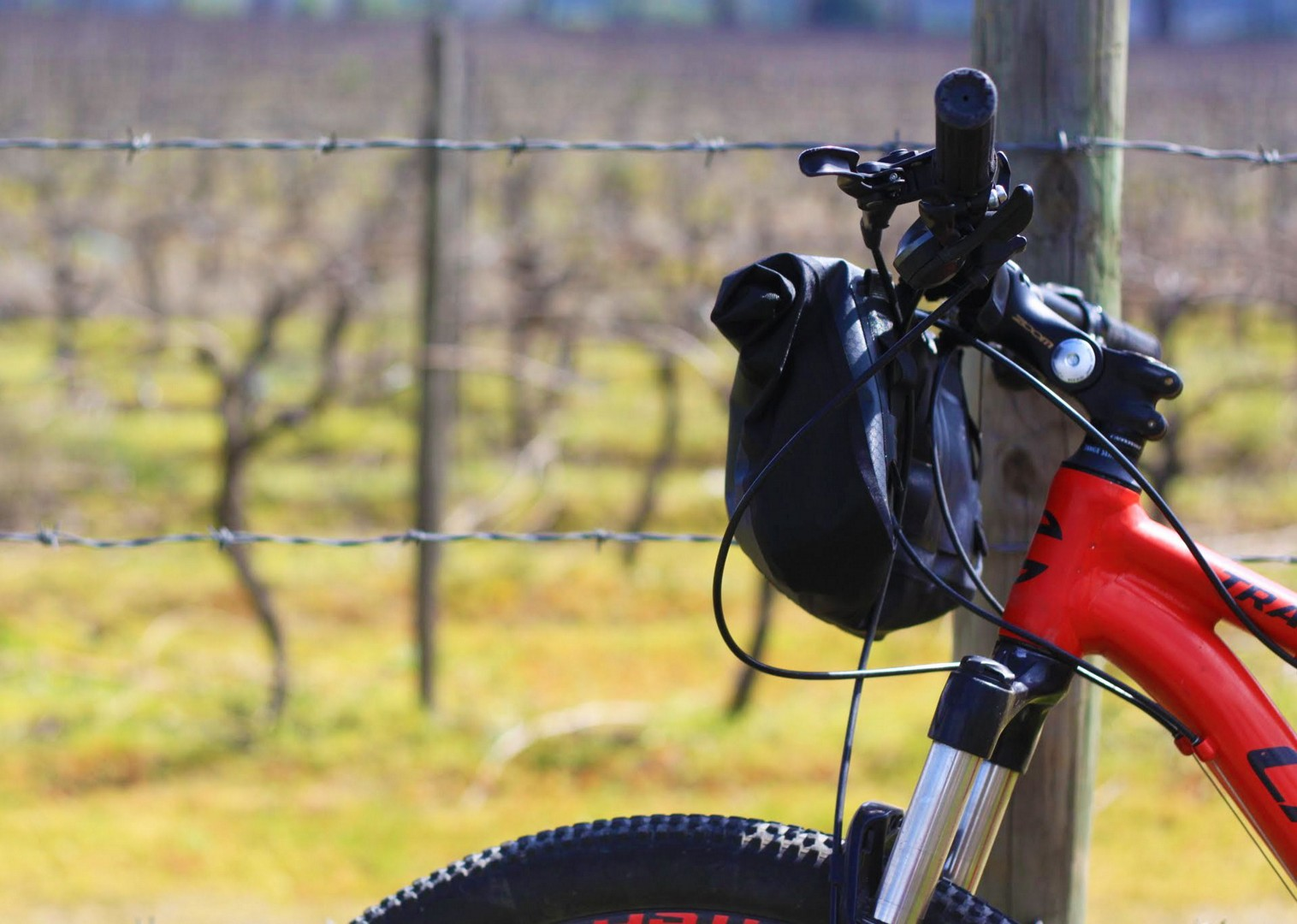 IMG_9406.jpg - Chile - Wine Country - Cycling Adventures