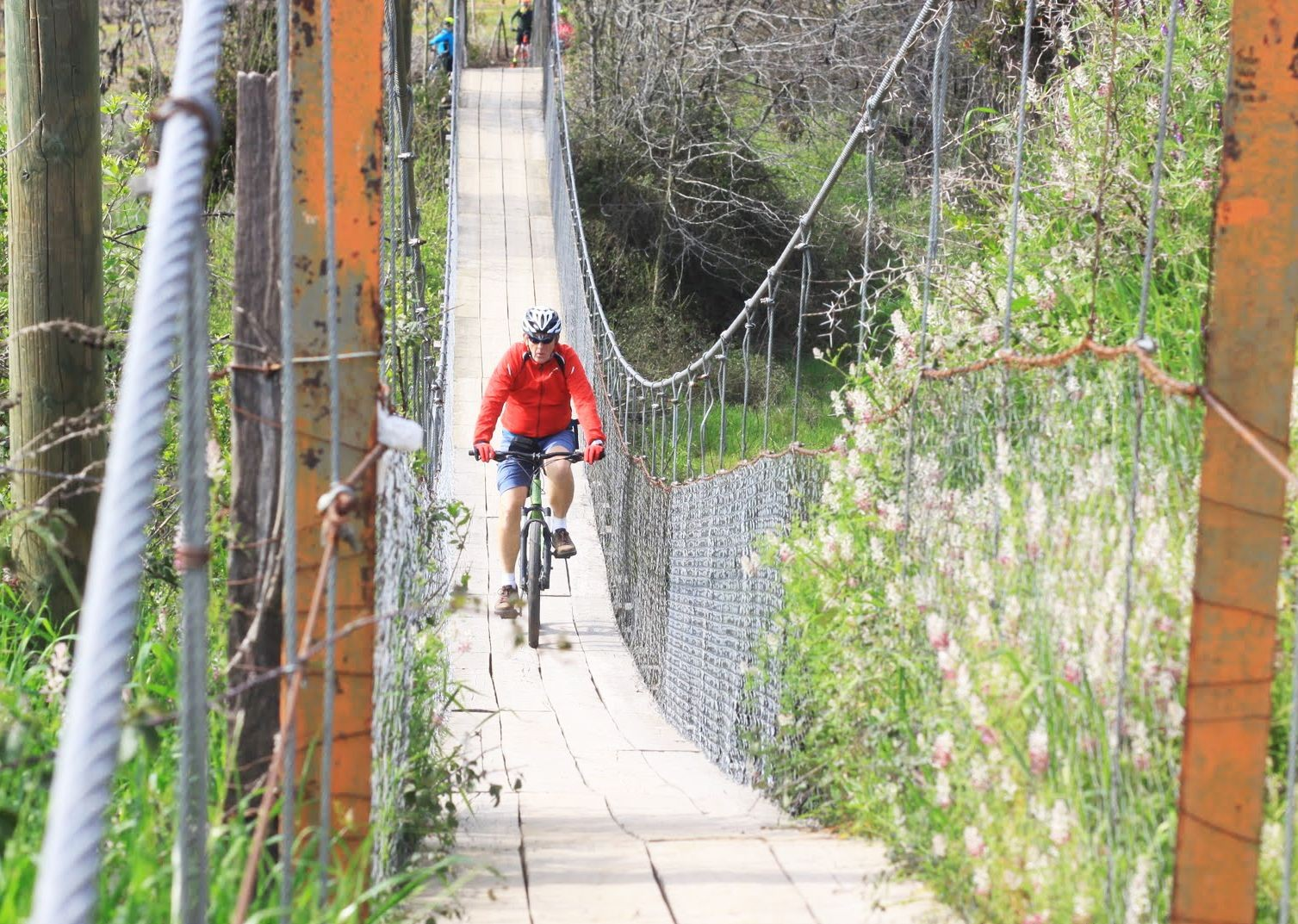IMG_9507.jpg - Chile - Wine Country - Cycling Adventures