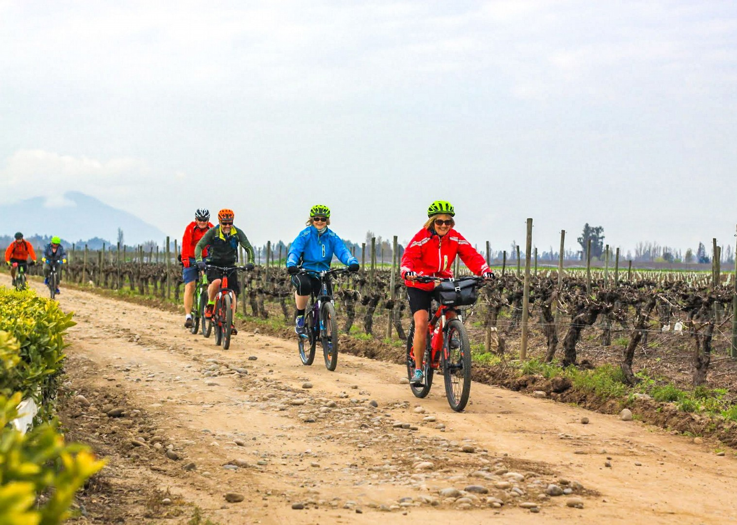 IMG_9465.jpg - Chile - Wine Country - Cycling Adventures