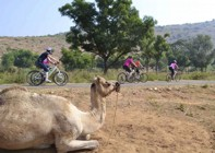 India - Palaces and Lakes of Rajasthan - Cycling Holiday Image