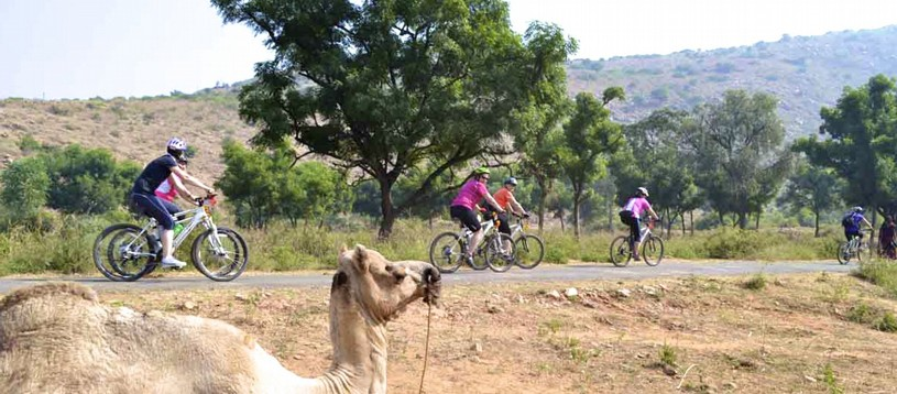 Take a look at this stunning cycling holiday in India, exploring the exotic sublime scenery of Rajasthan in the North West of the country. Expect easy paced cycling, curious camels, exceptional architecture and vibrantly adorned locals.