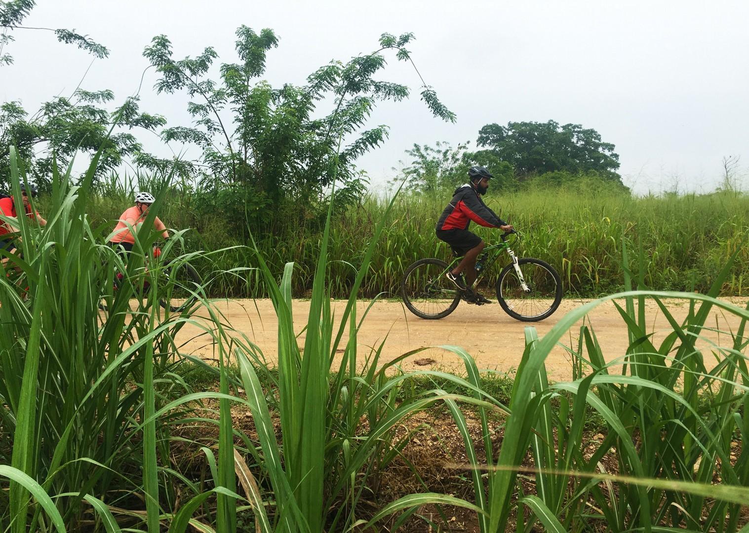 guided-group-cycling-trip-sri-lanka.jpg - Sri Lanka - Backroads and Beaches - Cycling Adventures