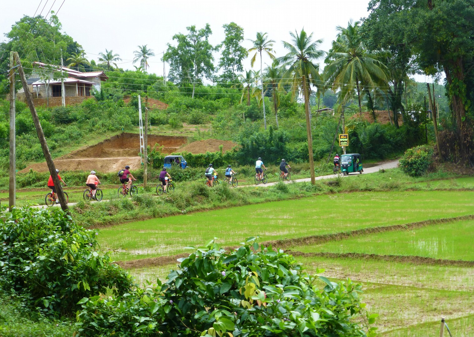 sir-lanka-guided-cycling-in-tropical-forest.jpg - Sri Lanka - Backroads and Beaches - Cycling Adventures