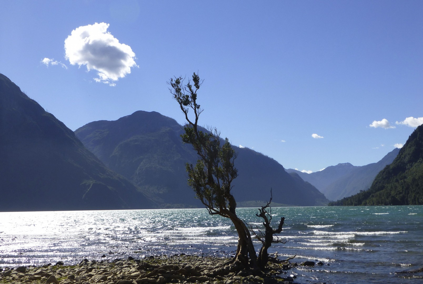cycling-holiday-chile.jpg - Chile and Argentinian - Lake District - Cycling Adventures
