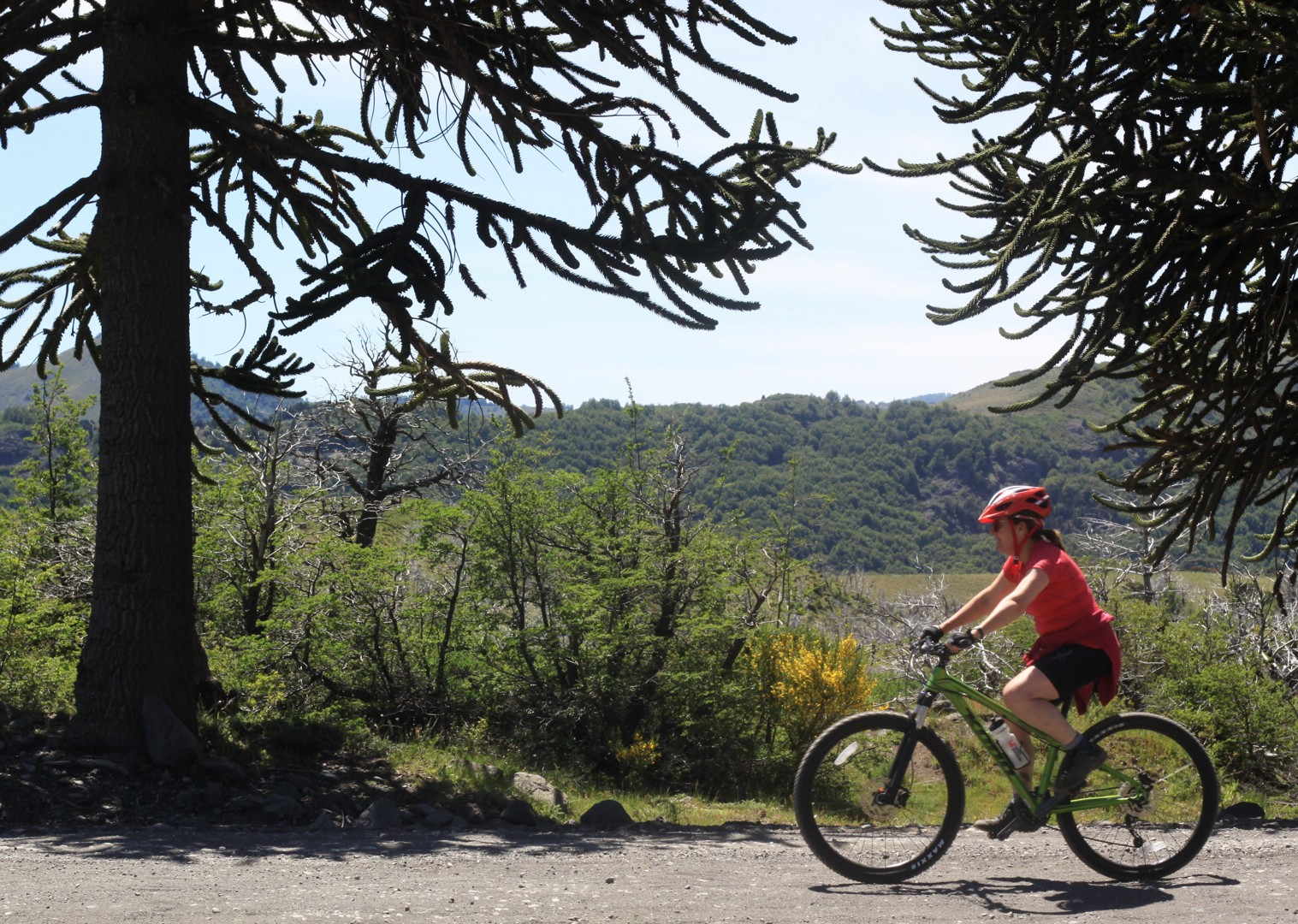IMG_9185.JPG - Chile and Argentinian - Lake District - Cycling Adventures