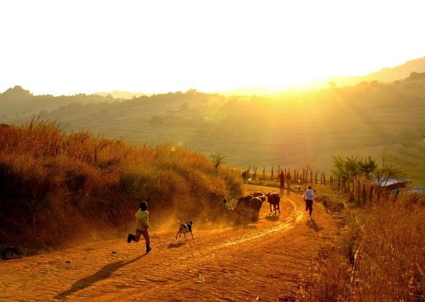lowveld-africa-swaziland-cycling-holiday.jpg - Swaziland - Cycling Holiday - Cycling Adventures