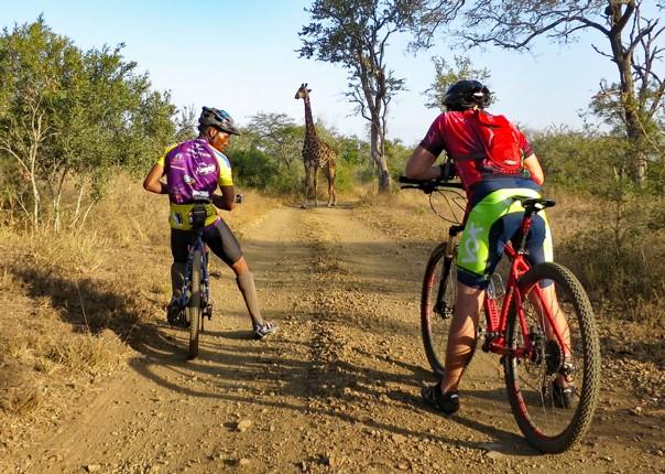 cycling-adventure-swaziland-cycling safari-saddle-skedaddle.jpg - Swaziland - Cycling Safari - Cycling Adventures