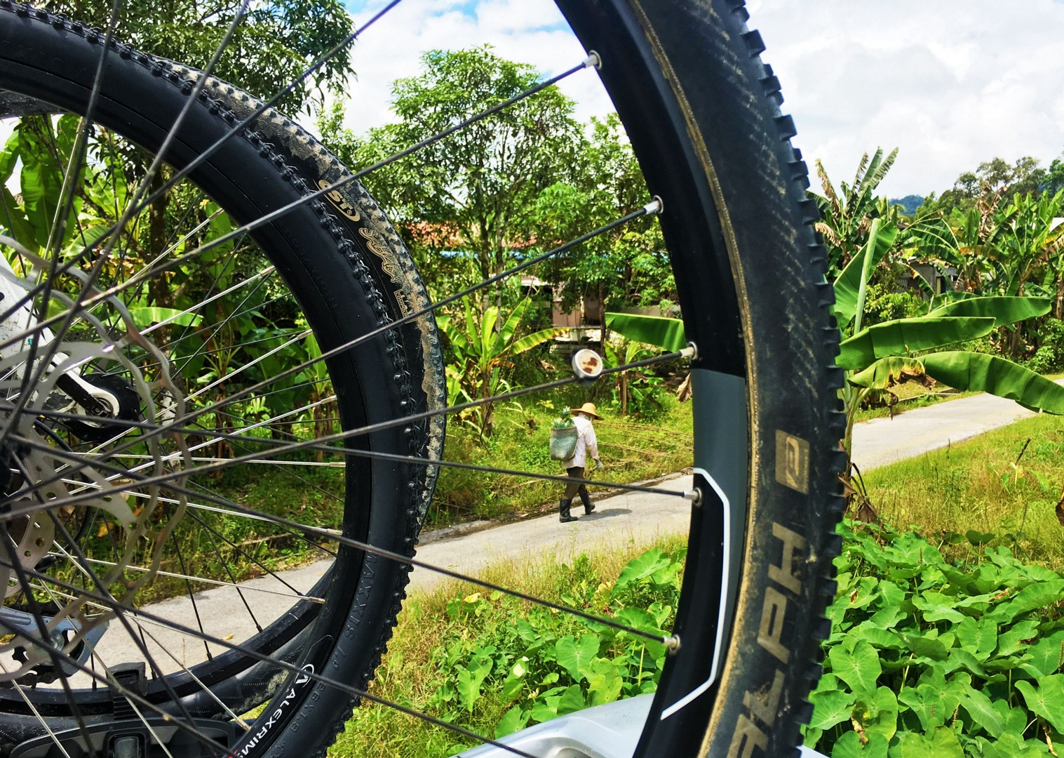 cycling-adventure-borneo-tropical.jpg - NEW! Borneo - Secret Sarawak - Cycling Adventures