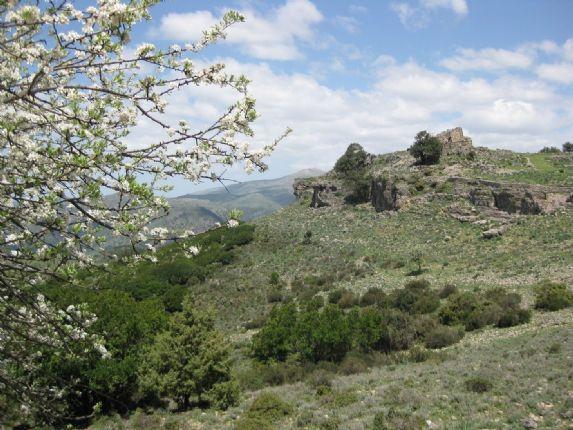 IMG_0144.jpg - Sardinia - Coast to Coast - Guided Mountain Bike Holiday - Mountain Biking