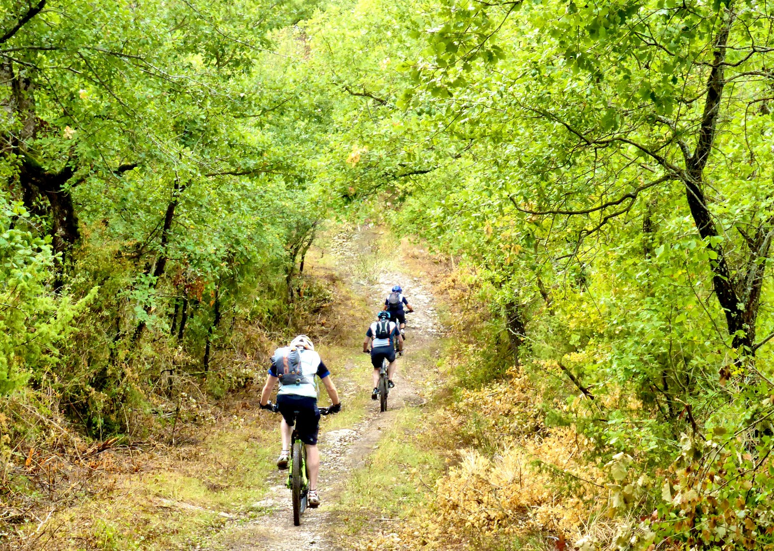 self-guided-mountain-bike-saddle-skedaddle-italy-tuscany-to-rome.jpg - Italy - Via Francigena (Tuscany to Rome) - Self-Guided Mountain Bike Holiday - Mountain Biking