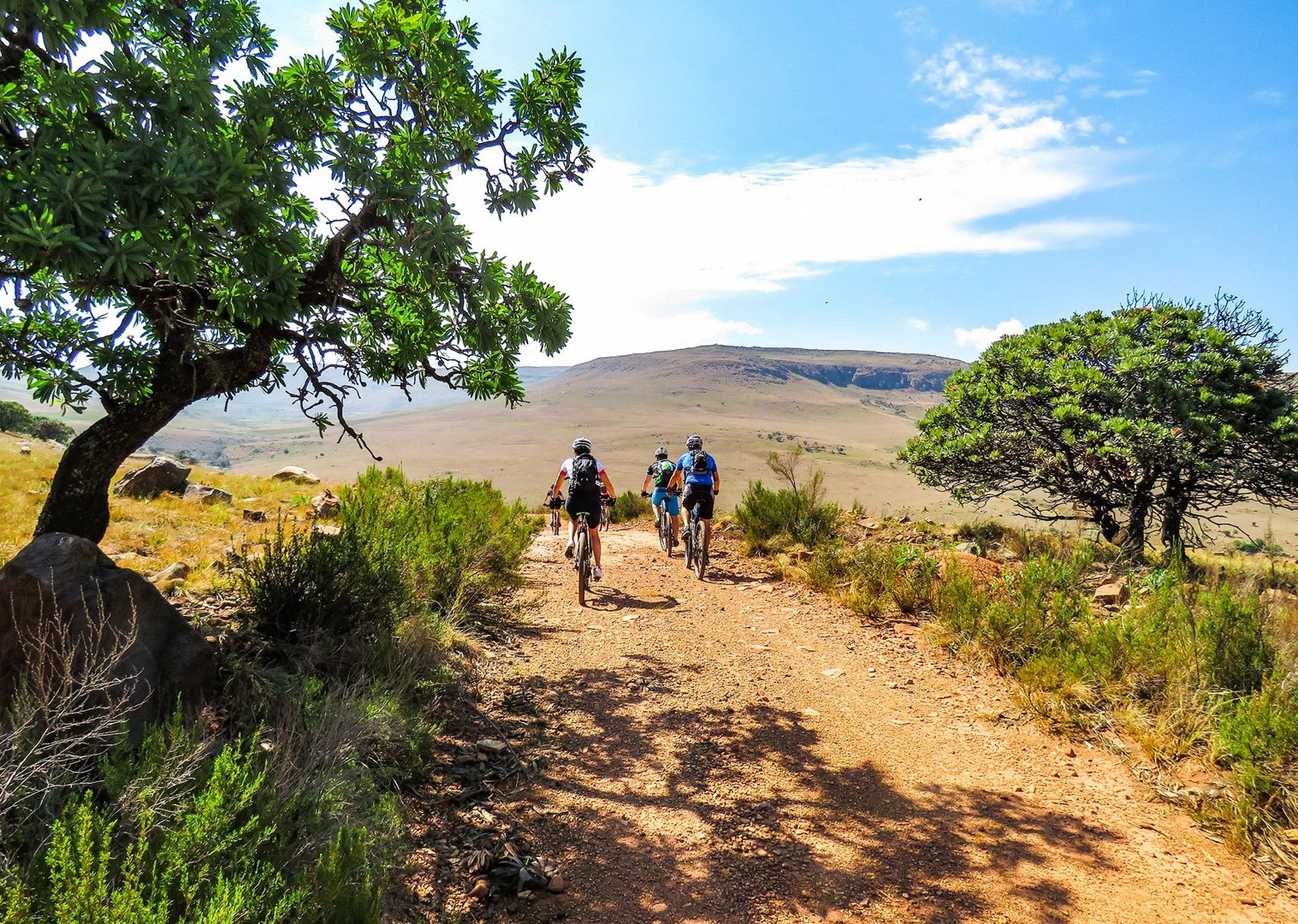 IMG_5474.jpg - NEW! South Africa and Botswana - Mountain Biking