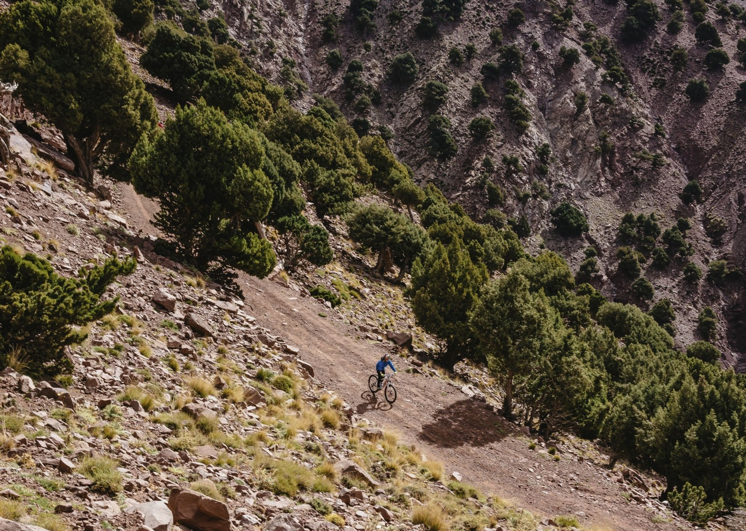 mountainbiking-morocco-atlas.jpg - Morocco - Atlas to Desert - Mountain Biking