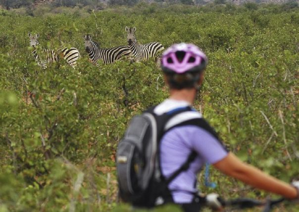 botswanahfcycling.jpg - South Africa and Botswana - Guided Mountain Bike Holiday - Mountain Biking
