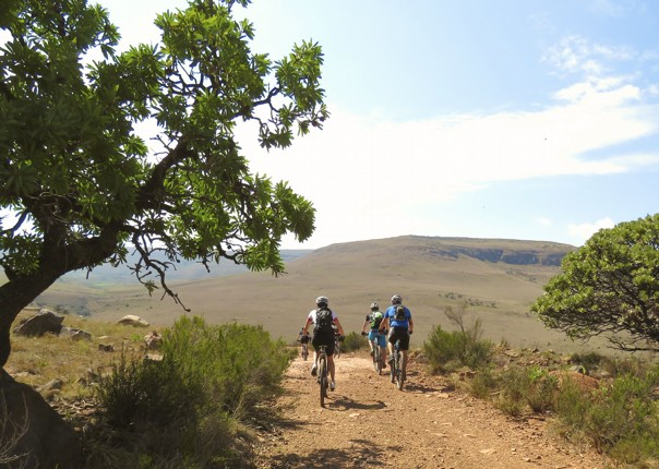 mountain-biking-holiday-south-africa-view.jpg - South Africa and Botswana - Guided Mountain Bike Holiday - Mountain Biking