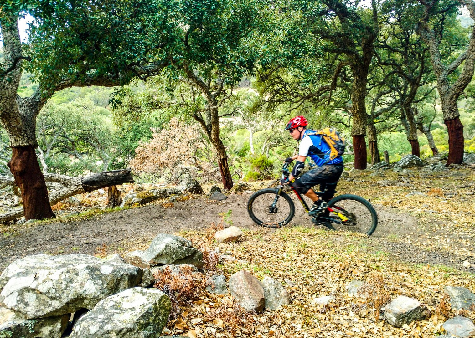 transandaluz19.jpg - Spain - Trans Andaluz - Guided Mountain Bike Holiday - Mountain Biking