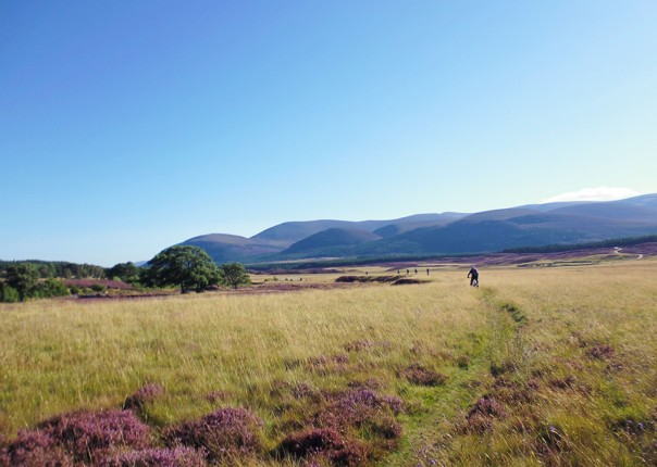 guided-mountain-biking-holiday-scotland.jpg - Scotland - Highlands Coast to Coast - Mountain Biking