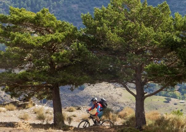 Sierranevada7.jpg - Spain - Sensational Sierra Nevada - Mountain Biking