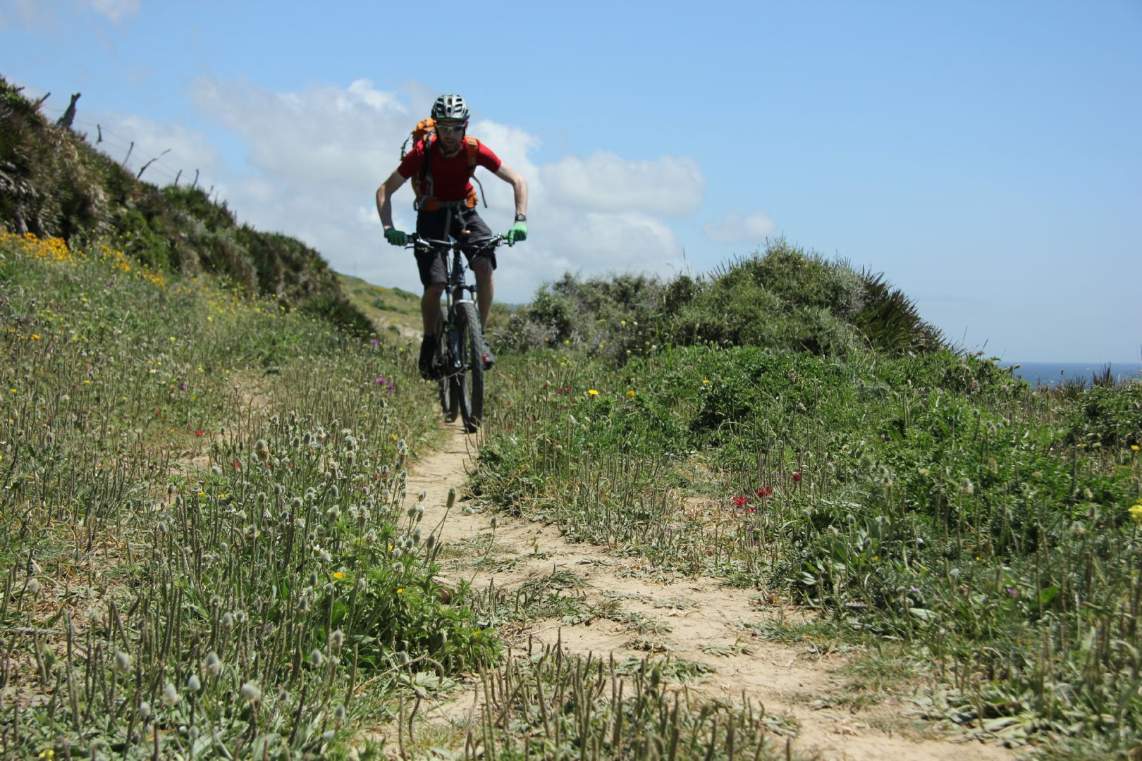 mountain-biking-holiday-in-spain-andalucia-mtb.jpg - Spain - Sensational Sierra Nevada - Guided Mountain Bike Holiday - Mountain Biking