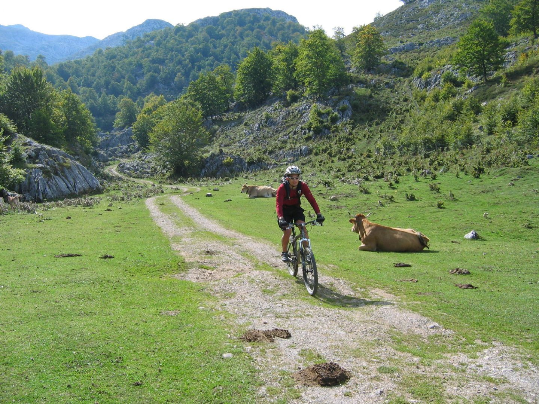 _Holiday.60.5767.jpg - Spain - Picos de Europa - Trans Picos - Guided Mountain Bike Holiday - Mountain Biking