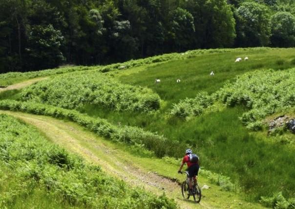 Standstoneway10.jpg - UK - Northumberland - Sandstone Way - Guided Mountain Bike Weekend - Mountain Biking