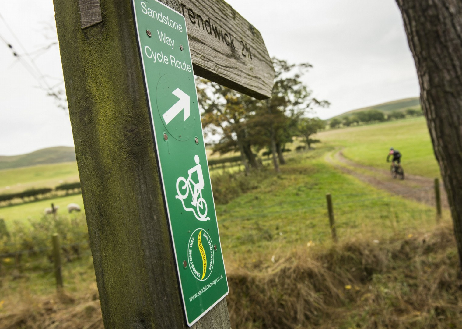 sandstone-way-rothwell-156.jpg - UK - Northumberland - Sandstone Way - Mountain Biking