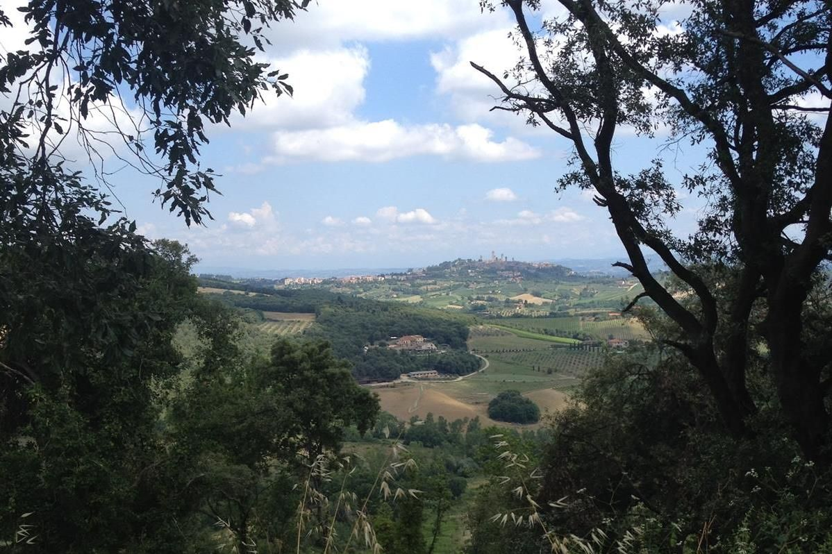 IMG_1651x.jpg - Italy - Tuscany - Sacred Routes - Guided Mountain Bike Holiday - Mountain Biking