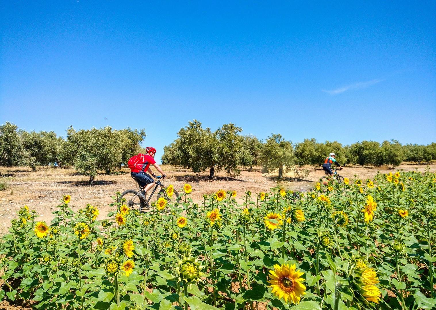 IMG_20170507_122824695.jpg - Spain - Ruta de la Plata - Guided Mountain Bike Holiday - Mountain Biking