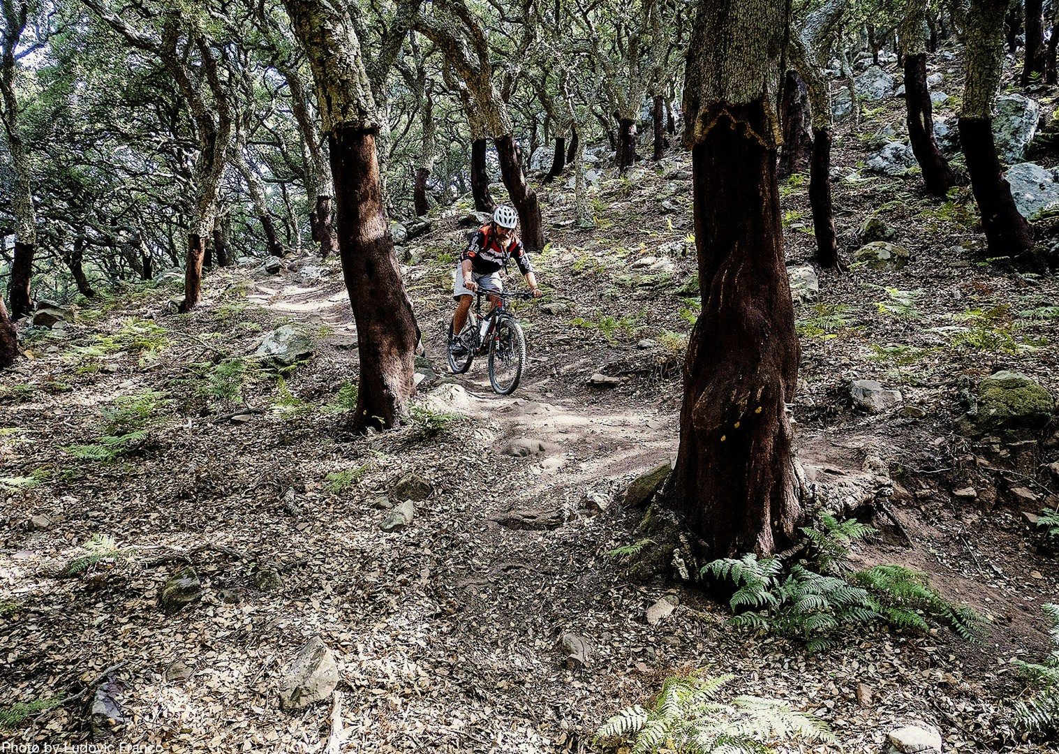tricky-singletrack-spain-skilled-tour-andalucia-skedaddle.jpg - Spain - Awesome Andalucia - Guided Mountain Bike Holiday - Mountain Biking