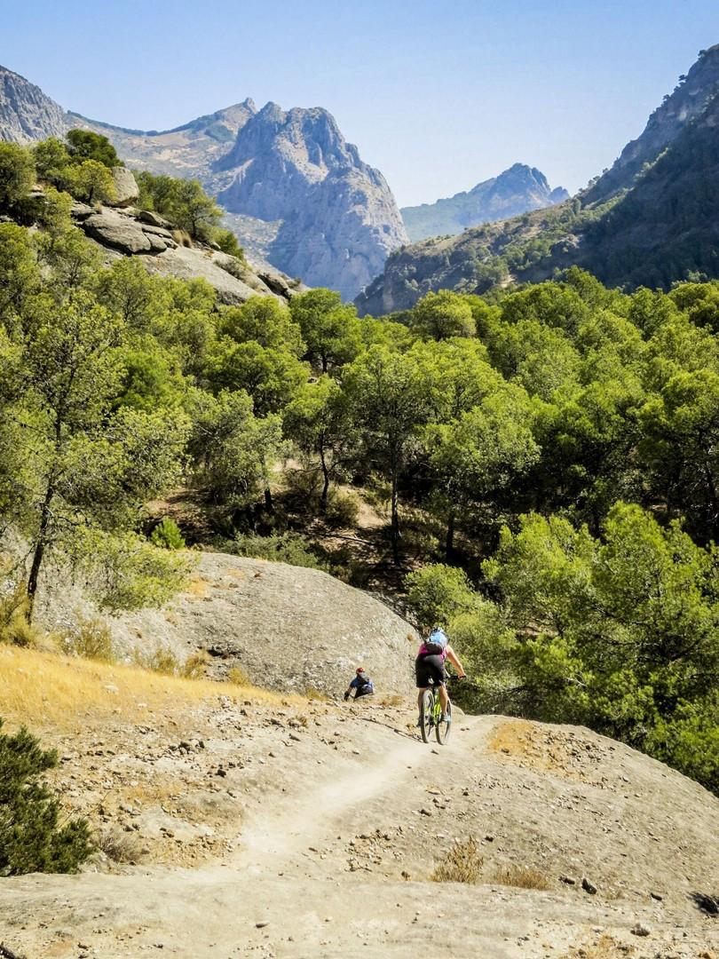 singletrack-guadiaro-mountain-biking-spain.jpg - Spain - Awesome Andalucia - Guided Mountain Bike Holiday - Mountain Biking