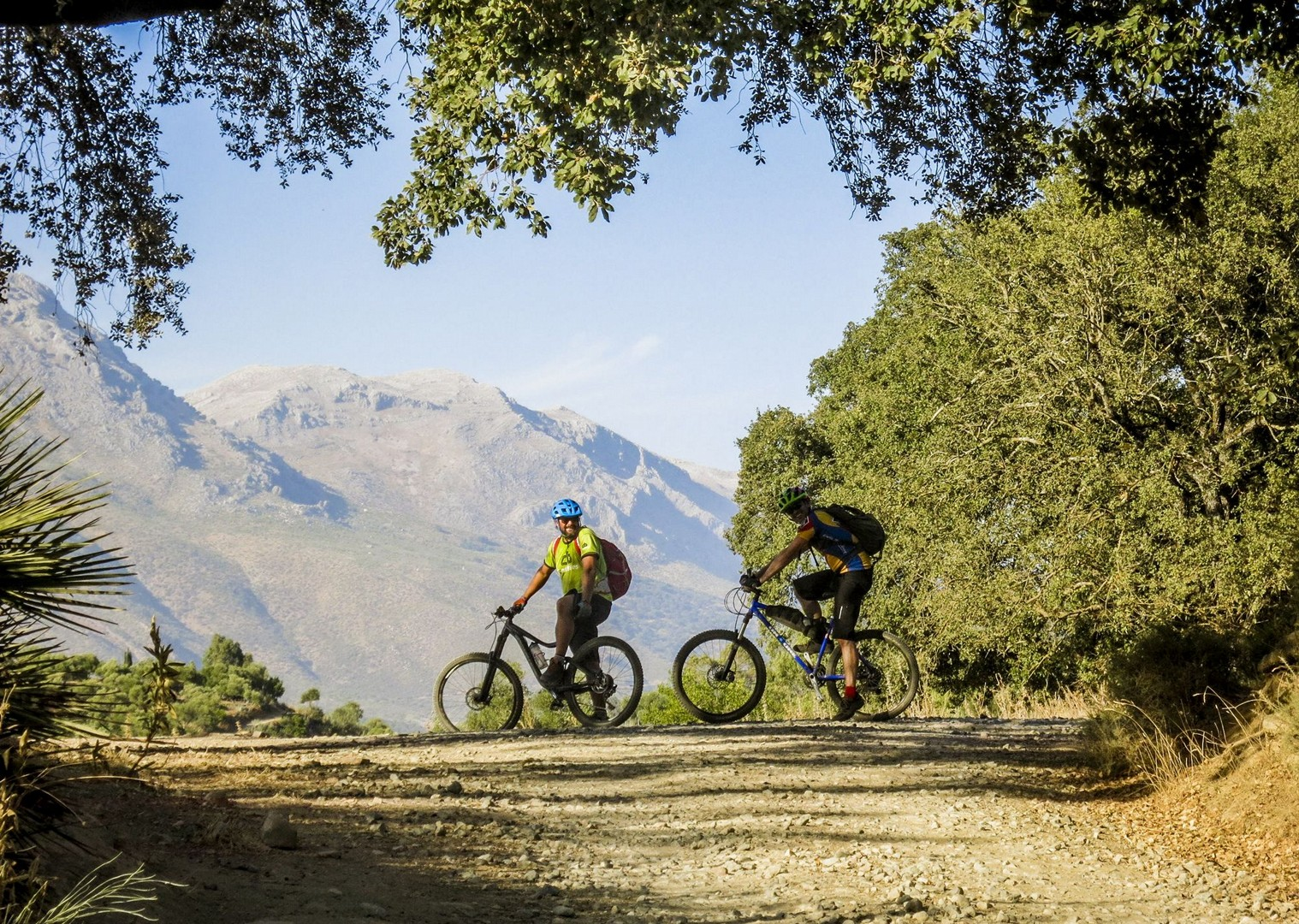 fast-mountain-biking-singletrack-spain-holiday-saddle-skedaddle.jpg - Spain - Awesome Andalucia - Guided Mountain Bike Holiday - Mountain Biking