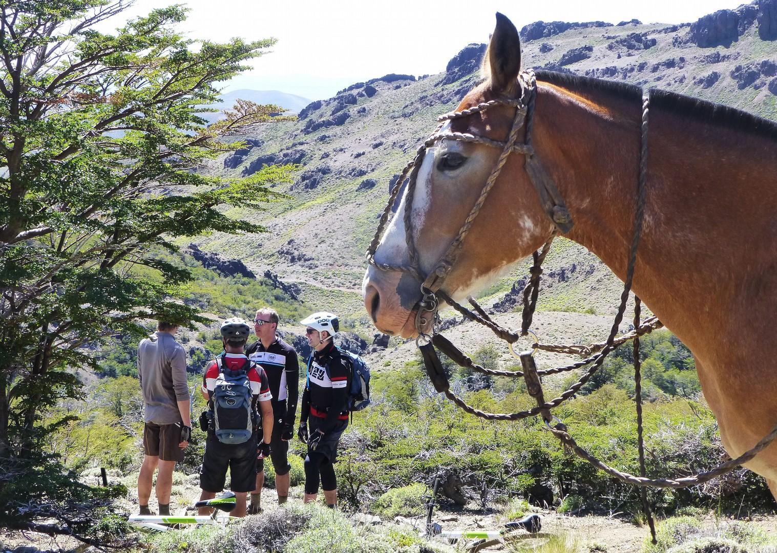 P1030068.JPG - Chile and Argentina - Wild Patagonia - Mountain Biking
