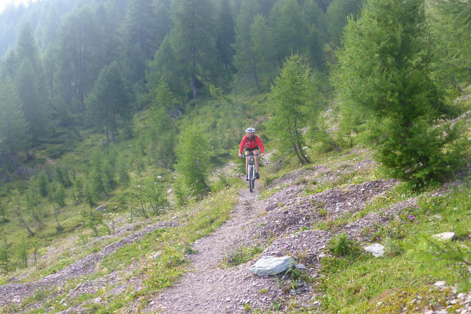 Dolomiti MTB - 1306.jpg - Italy - Dolomites of Brenta - Guided Mountain Bike Holiday - Mountain Biking