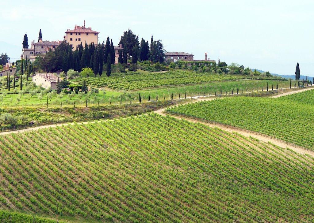 cycling-holiday-tuscany 10.jpg - Italy - Via Francigena (Tuscany to Rome) - Mountain Biking