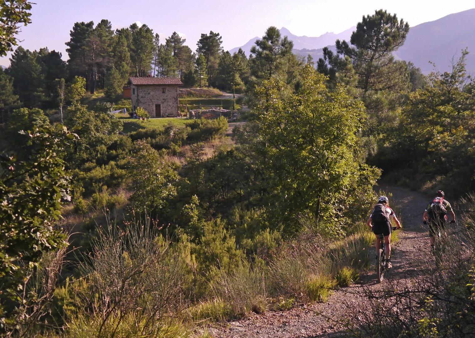 mountain-biking-holiday-italy-tuscany-francegina-landscape-nature.jpg - Italy - Via Francigena (Tuscany to Rome) - Guided Mountain Biking Holiday - Mountain Biking
