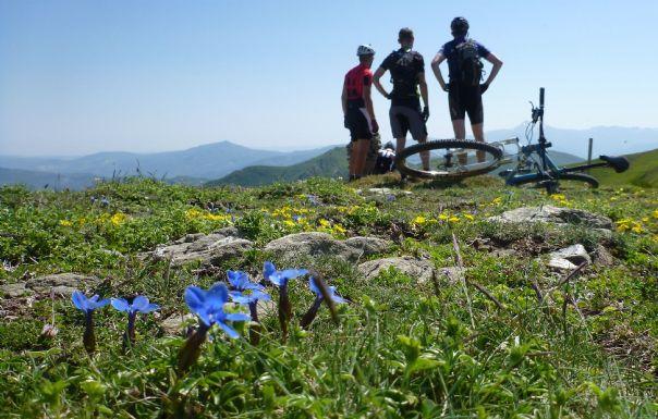 The roof of Tuscany.jpg - Italy - Via Francigena (Tuscany to Rome) - Guided Mountain Biking Holiday - Mountain Biking