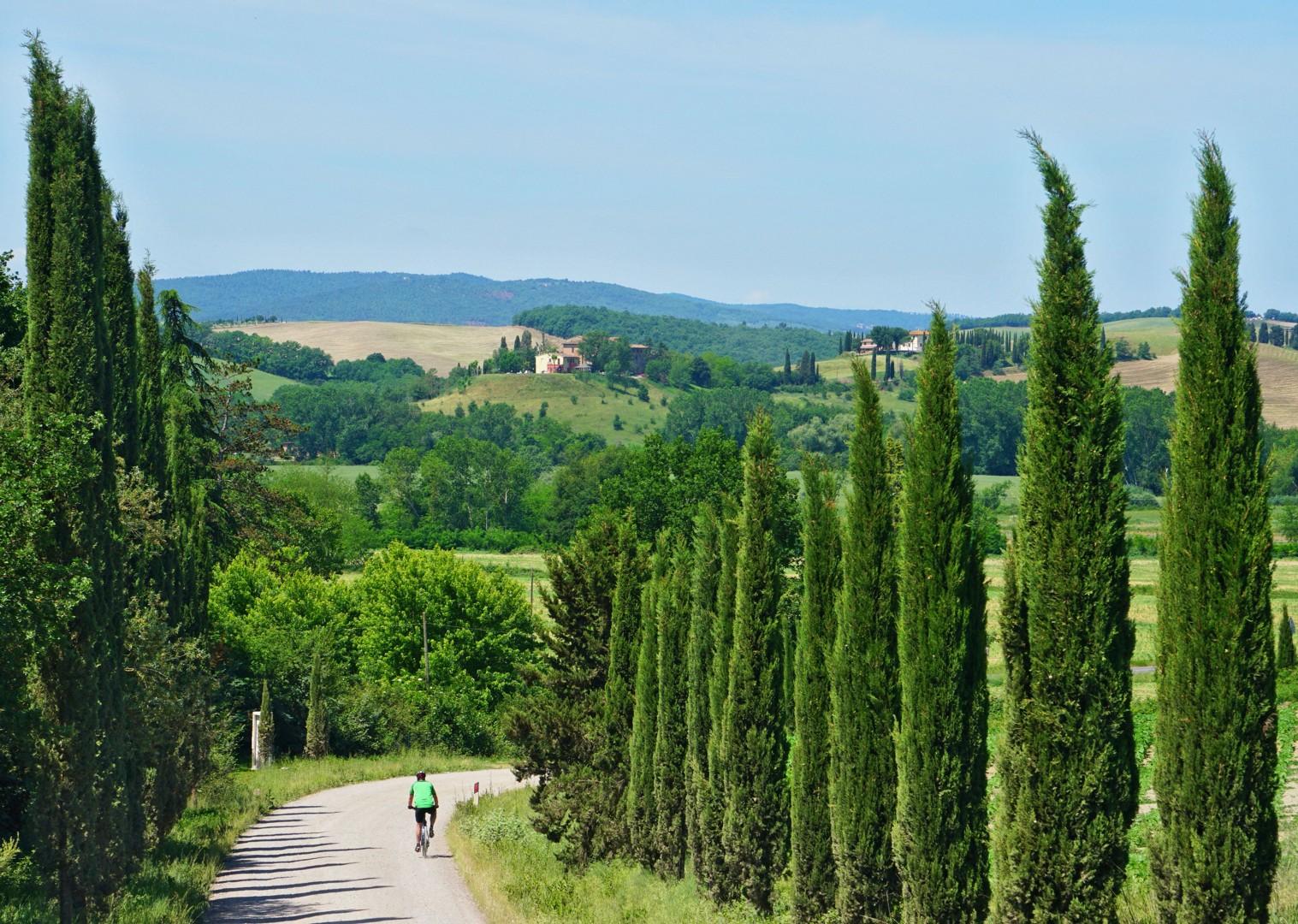 35490268780_464890b42d_o.jpg - Italy - Via Francigena (Tuscany to Rome) - Mountain Biking