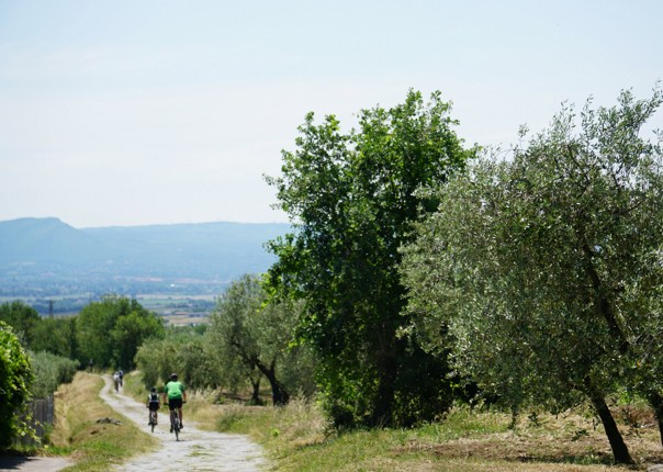 35875669755_20e8ea84fa_o.jpg - Italy - Via Francigena (Tuscany to Rome) - Guided Mountain Biking Holiday - Mountain Biking