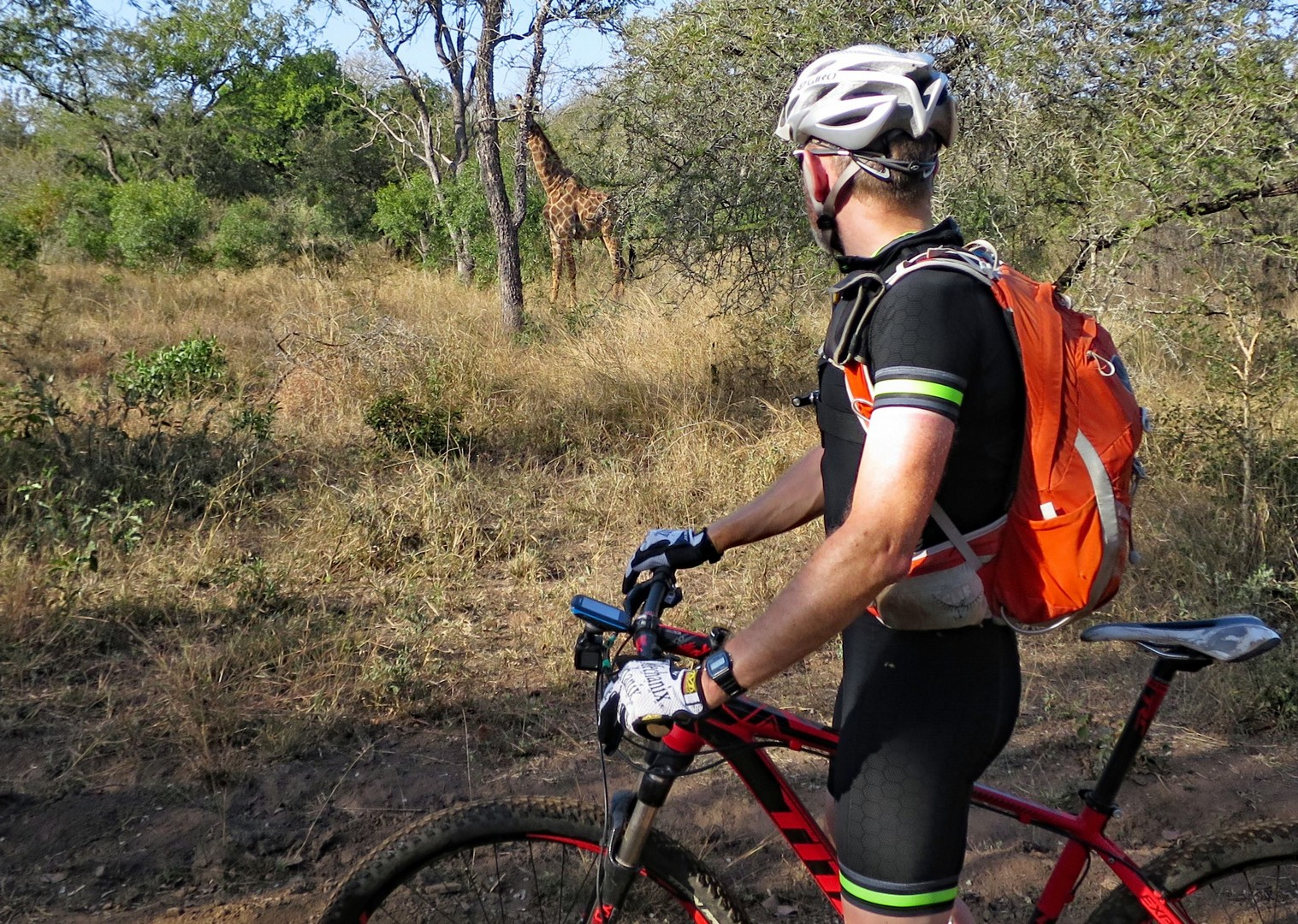 wildlife-mountain-bike-holiday-in-africa-swaziland.jpg - Swaziland (Eswatini) - Singletrack and Sundowners - Mountain Biking