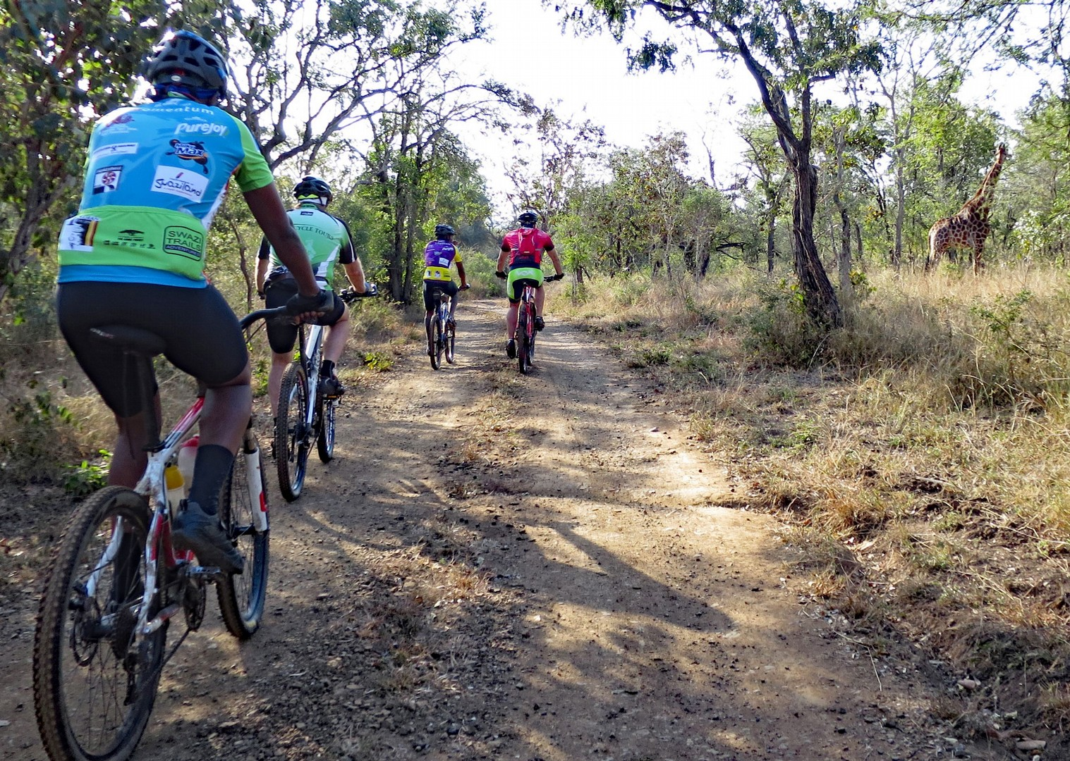 south-africa-guided-mountain-bike-holiday-africa-swaziland-singletrack-and-sundowners.jpg - Swaziland - Singletrack and Sundowners - Guided Mountain Bike Holiday - Mountain Biking