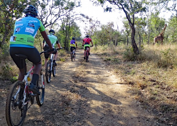south-africa-guided-mountain-bike-holiday-africa-swaziland-singletrack-and-sundowners.jpg - Swaziland - Singletrack and Sundowners - Mountain Biking