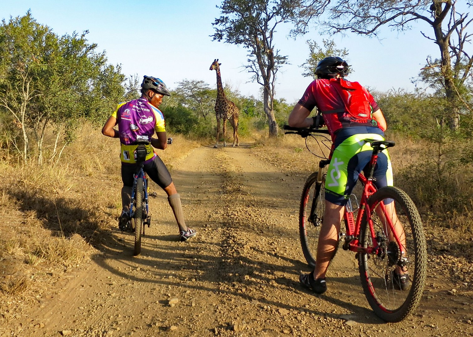 Trail hazard at Mbuluzi.jpg - Swaziland (Eswatini) - Singletrack and Sundowners - Mountain Biking