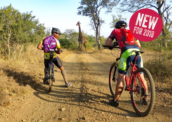 Africa - Swaziland - Singletrack and Sundowners - Guided Mountain Bike Holiday Thumbnail