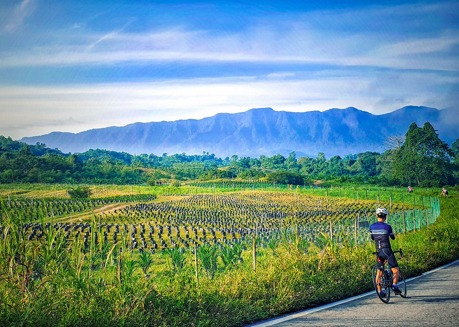 road-borneo-holiday-cycling-saddle-skedaddle-with-guides.jpg - Borneo - Sarawak to Sabah - Guided Road Cycling Holiday - Road Cycling